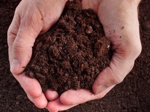 Dùng tia laser để khử ô nhiễm trong đất